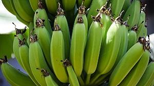 Banana Kele ki sabji