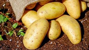 Potato aloo ki sabji