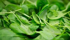 Spinach palak ke patte