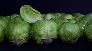 all vegetables name in hindi and english with pictures