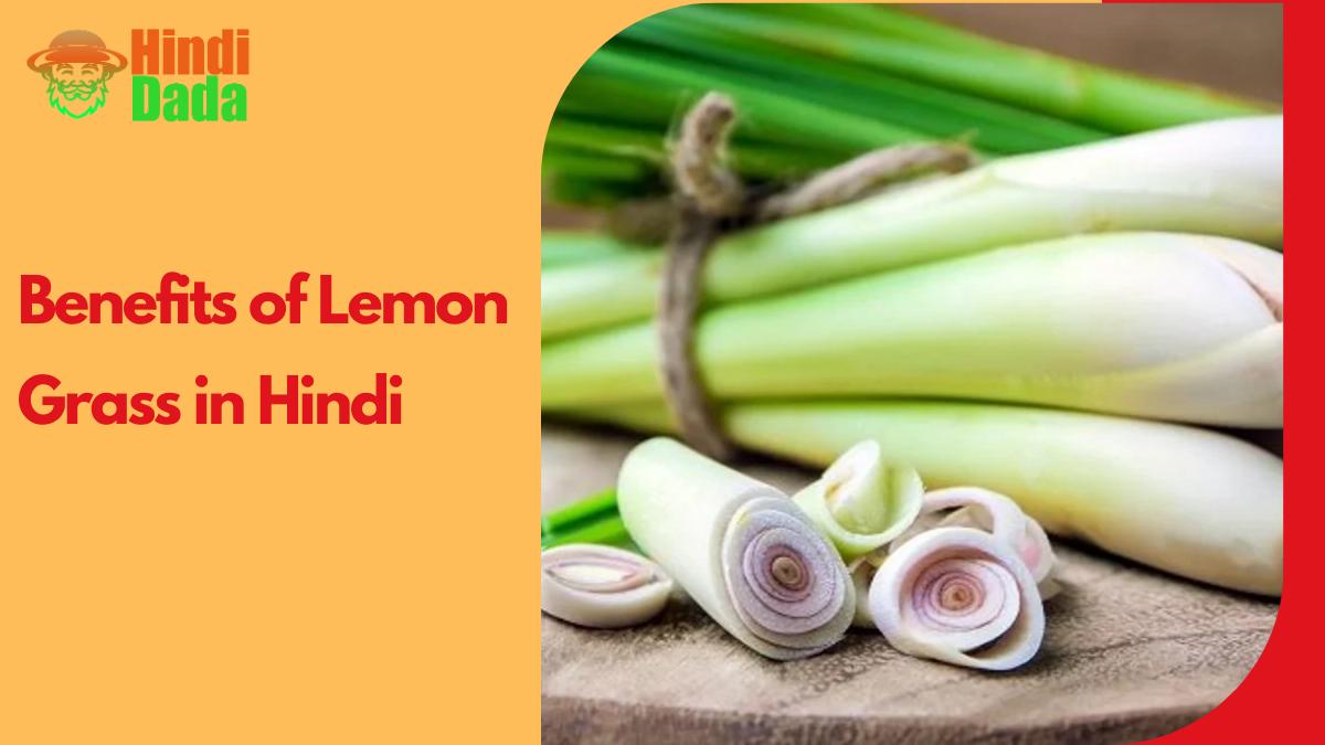 Lemon Grass Information In Hindi (2)